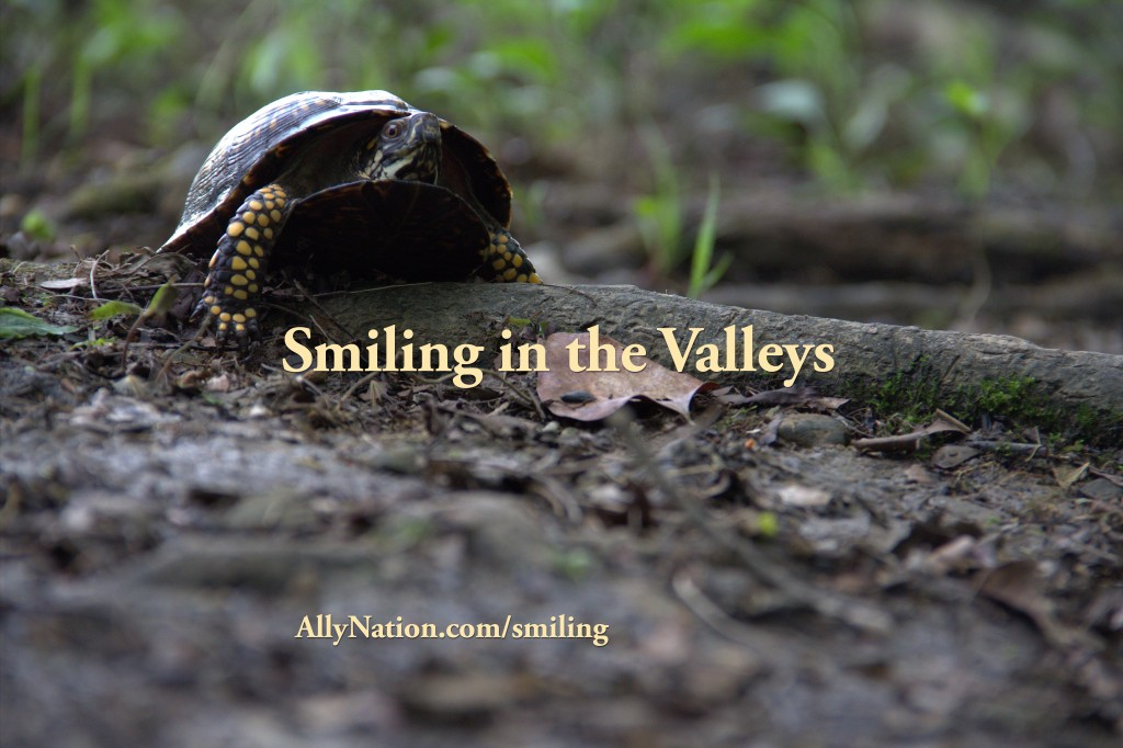 Smiling in the Valleys Ally Nation